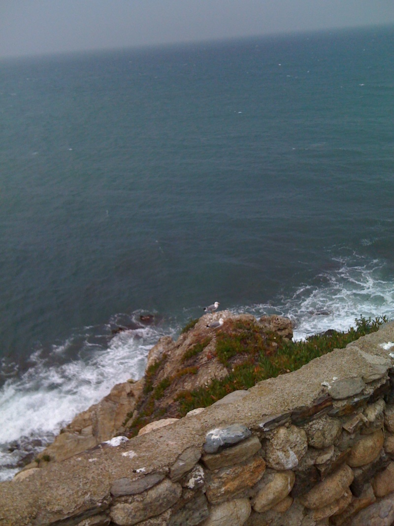 quelques jours vers Collioure 00410