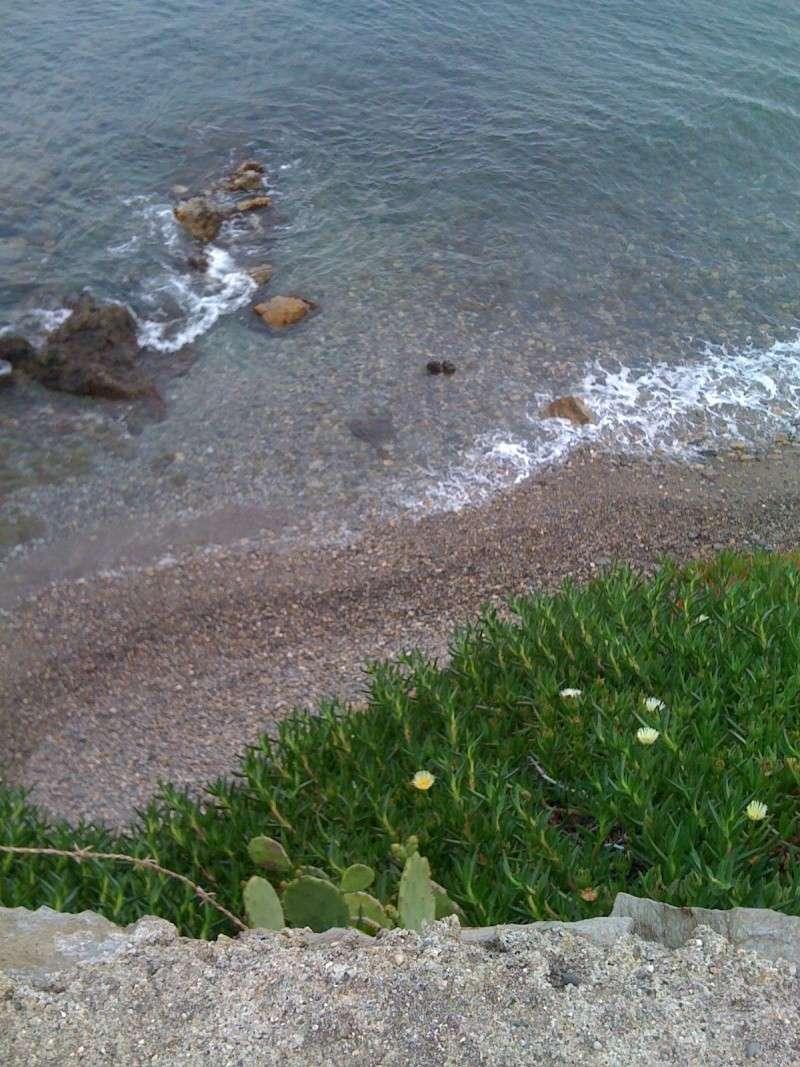 quelques jours vers Collioure 03511