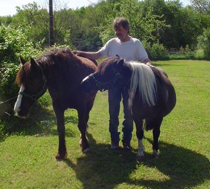 ARTHUR & AKIM - ONC poneys présumés nés en 1989 - adoptés en août 2009 par kalkita  Akim_h10