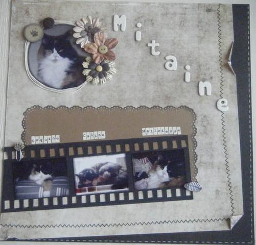 Galerie de Clochette MAJ 17 mai - Page 2 Photo_40