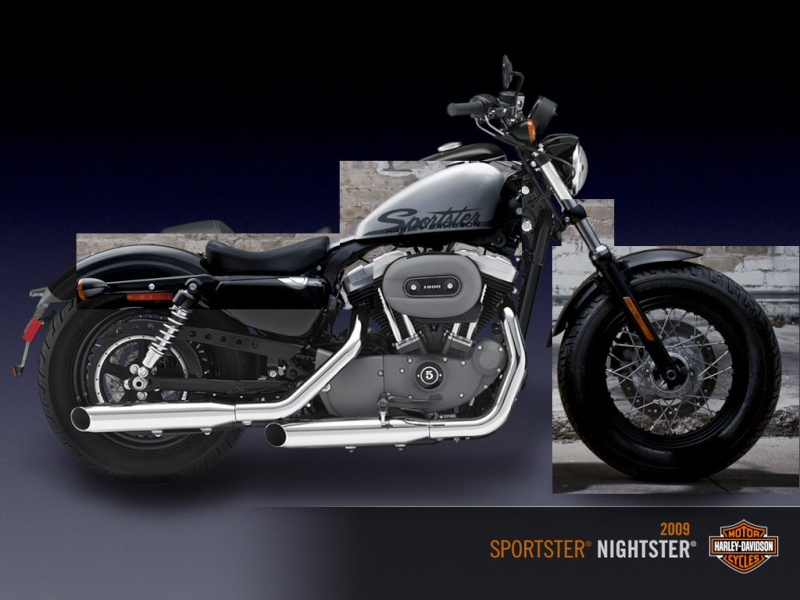 Nouveau Sportster Forty-Eight 1200cm3 - Page 9 Pnw_sp10