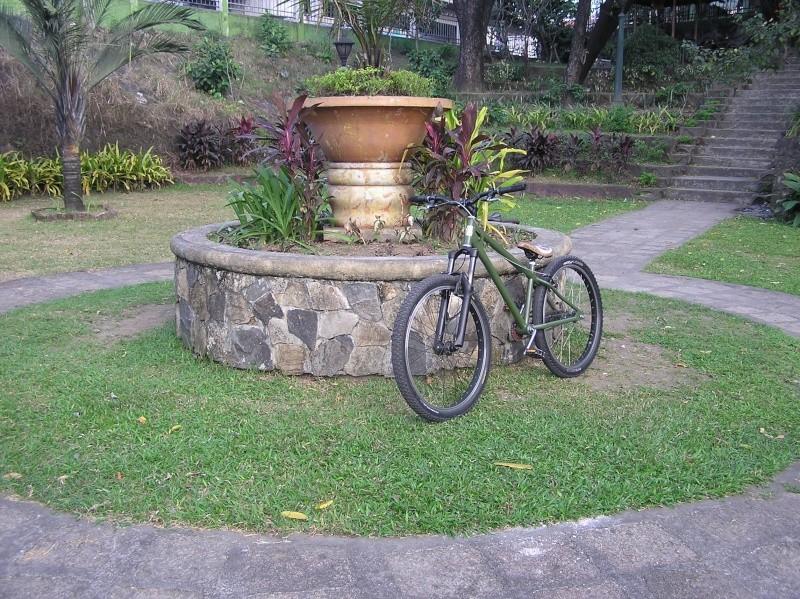 newbie help, bike set-up + advice .. P1010013