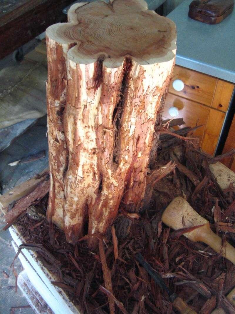 Pas à pas d'une sculpture en bois de cade - Page 2 A10
