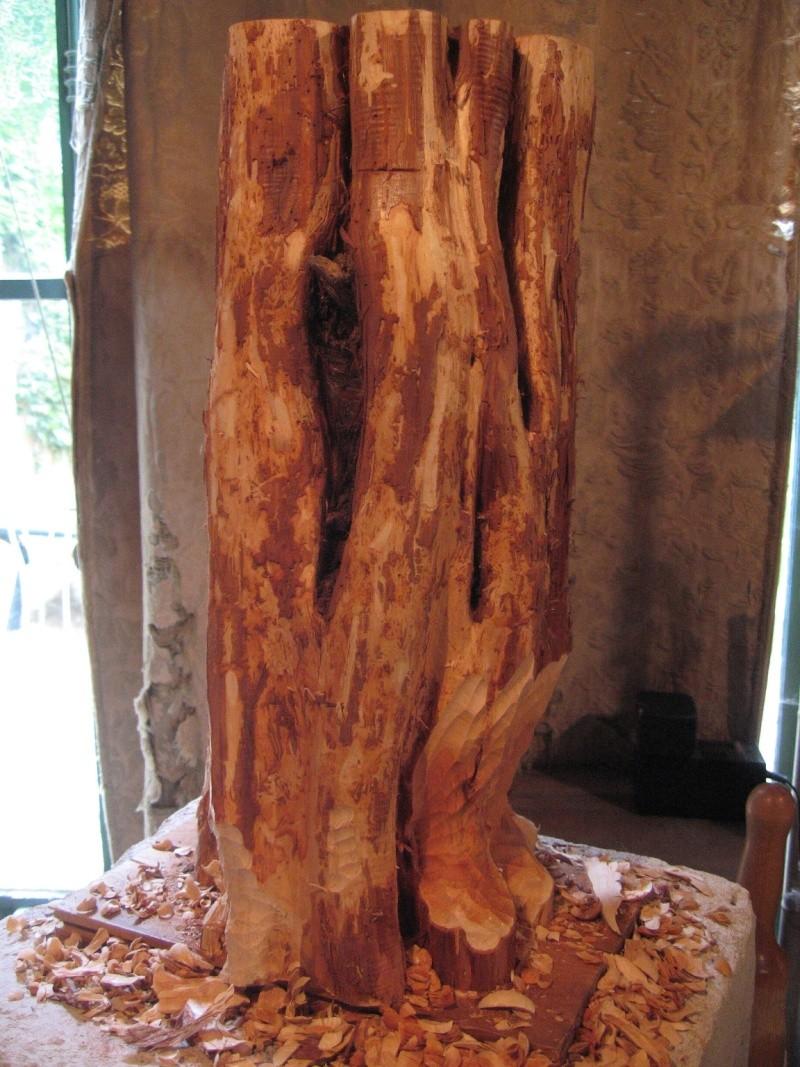 Pas à pas d'une sculpture en bois de cade - Page 2 Aaa10