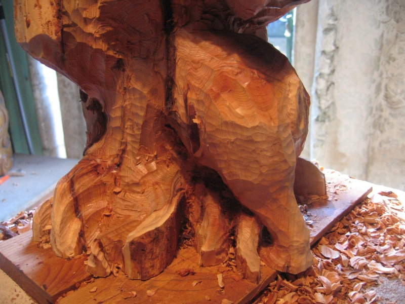 Pas à pas d'une sculpture en bois de cade - Page 2 Aaaaaa13