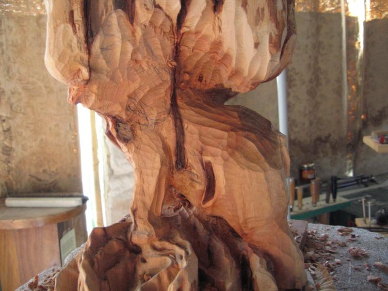 Pas à pas d'une sculpture en bois de cade - Page 2 Aaaaaa22