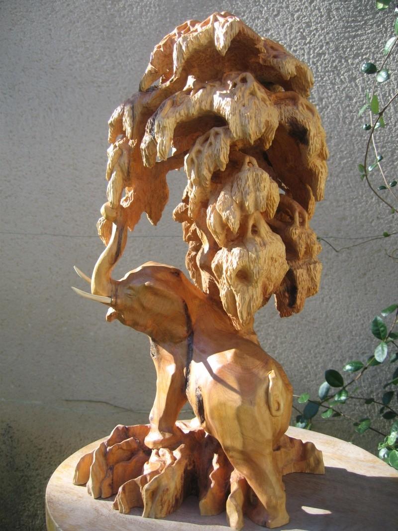 Pas à pas d'une sculpture en bois de cade - Page 2 Aaaaaa30
