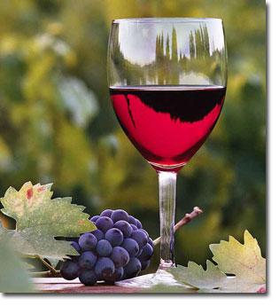 Brazilian party Wine-t10