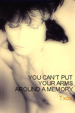 You can't put your arms around a memory Thunde10