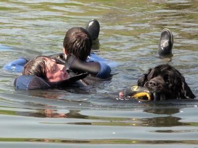 Démonstration de chiens de sauvetage le dimanche 11 juillet 2010 Wb714