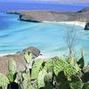 Secret paradise  Califo10