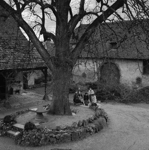 La vie au Freihof à Wangen il y a quelques années déjà..... 1210