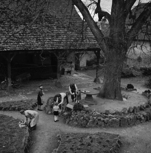La vie au Freihof à Wangen il y a quelques années déjà..... 1410