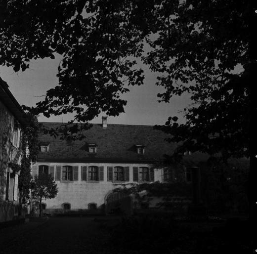 La vie au Freihof à Wangen il y a quelques années déjà..... 1510