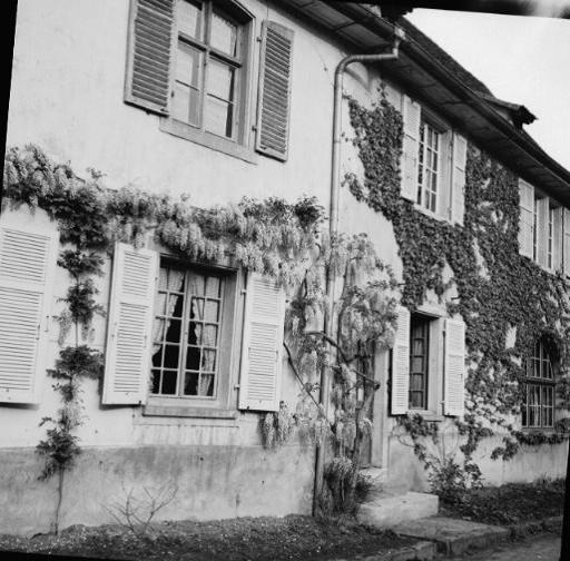 La vie au Freihof à Wangen il y a quelques années déjà..... 1610