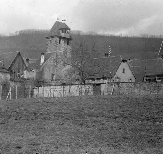 La vie au Freihof à Wangen il y a quelques années déjà..... 16810