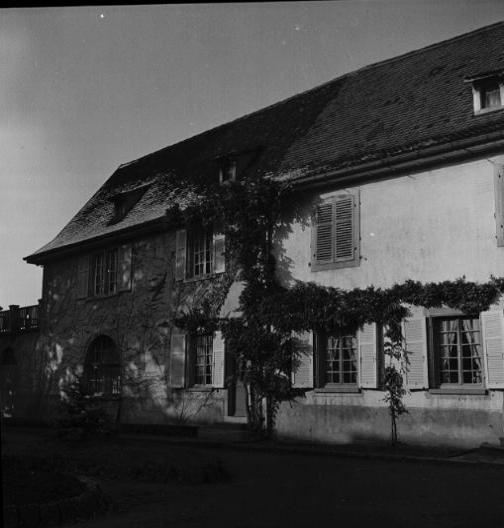 La vie au Freihof à Wangen il y a quelques années déjà..... 1810