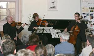 Concert Mozart au vieux Freihof 20090111
