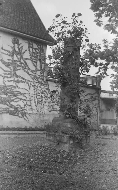 La vie au Freihof à Wangen il y a quelques années déjà..... 2810