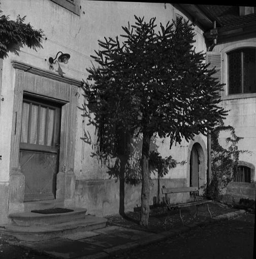La vie au Freihof à Wangen il y a quelques années déjà..... 510