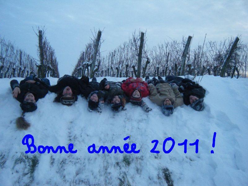 Bonne et heureuse année 2011 Dscf0210
