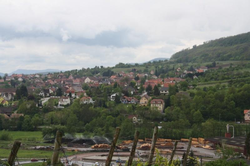 Sur le Marlenberg ....... Img_1015