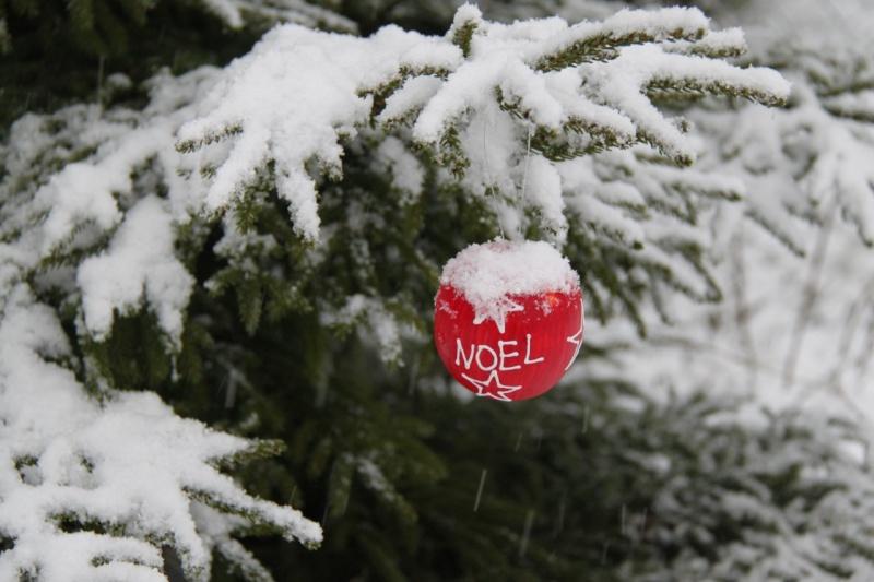 Vive la neige à Wangen ! - Page 3 Img_1045