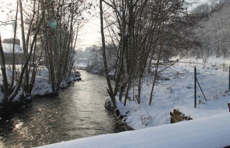 La Mossig , notre rivière Img_1235
