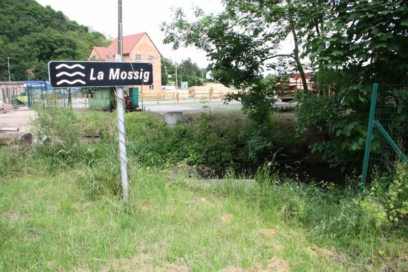 Contournement de Marlenheim Img_1321