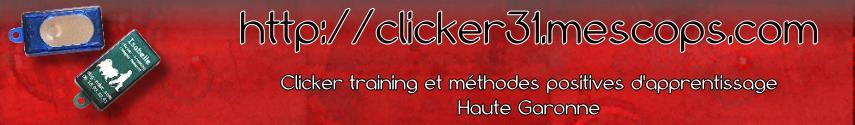 Clicker Training  - 31