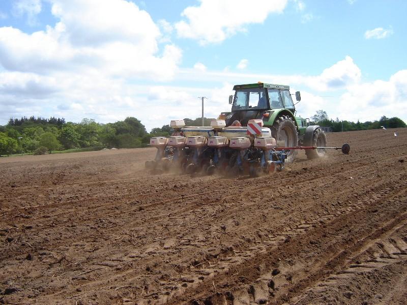 Semis maïs 2009 - Page 2 Dsc04118