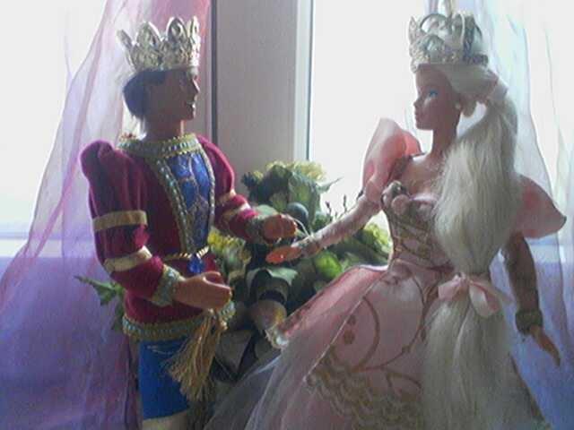 Ma Collection de Princesses Barbie 19012015