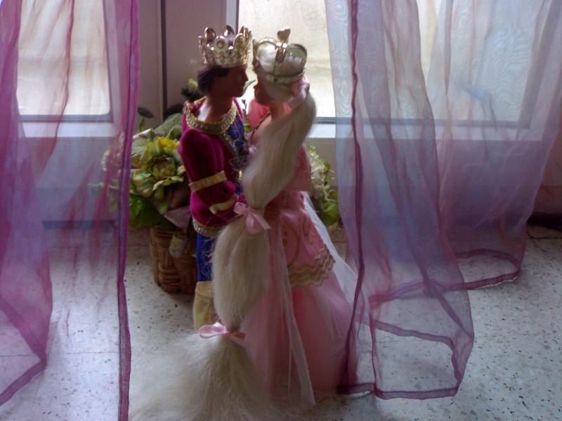 Ma Collection de Princesses Barbie 19012017