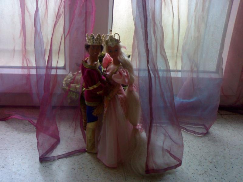 Ma Collection de Princesses Barbie 19012021