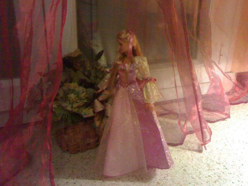 Ma Collection de Princesses Barbie 19012030