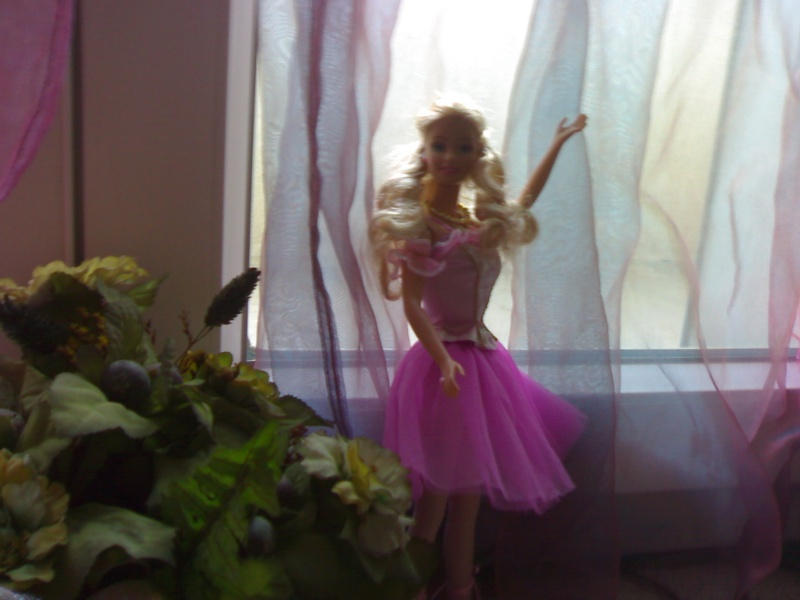 Ma Collection de Princesses Barbie 19012040