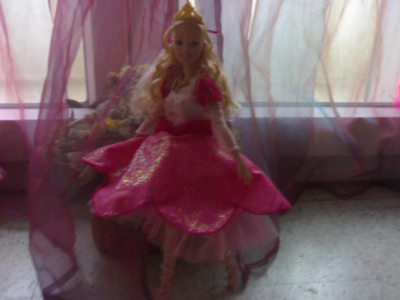 Ma Collection de Princesses Barbie 19012049