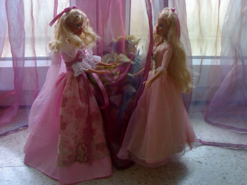 Ma Collection de Princesses Barbie 19012052