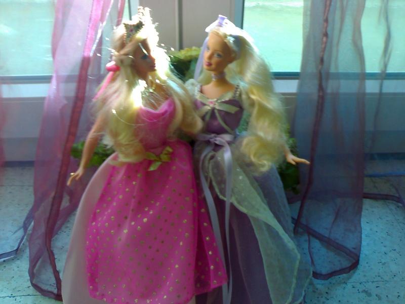 Ma Collection de Princesses Barbie 21012010