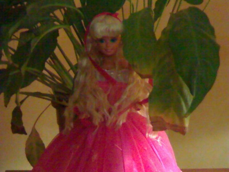 Ma Collection de Princesses Barbie 21012012