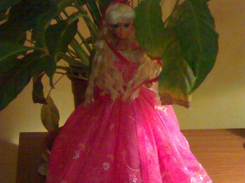 Ma Collection de Princesses Barbie 21012013