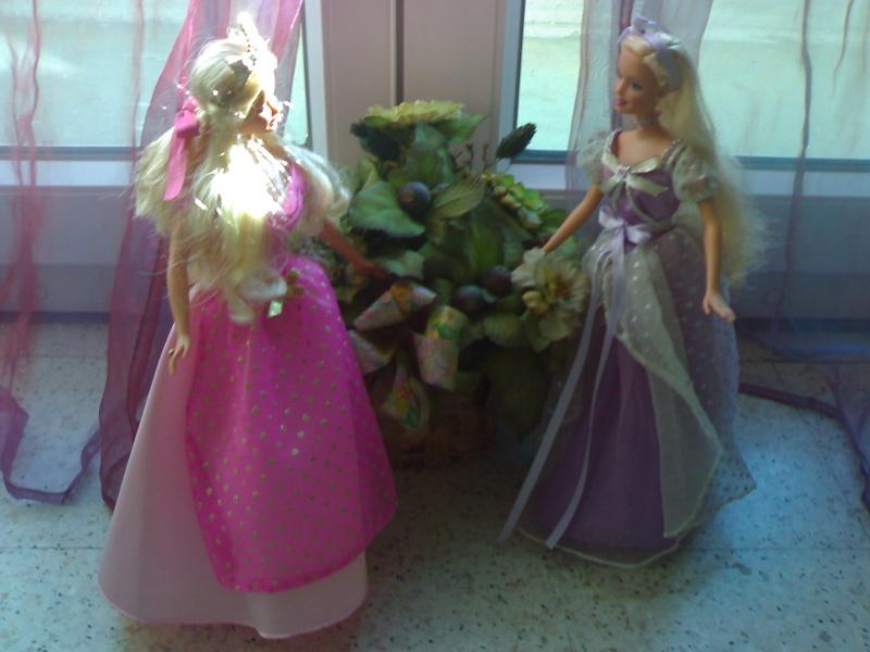 Ma Collection de Princesses Barbie 21012017