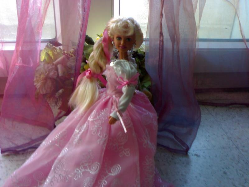 Ma Collection de Princesses Barbie 29012015