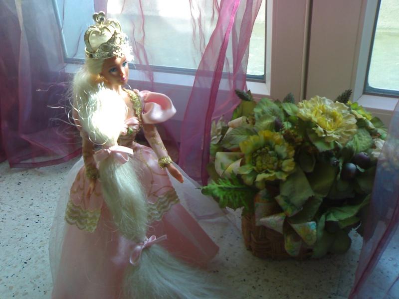 Ma Collection de Princesses Barbie 29012020
