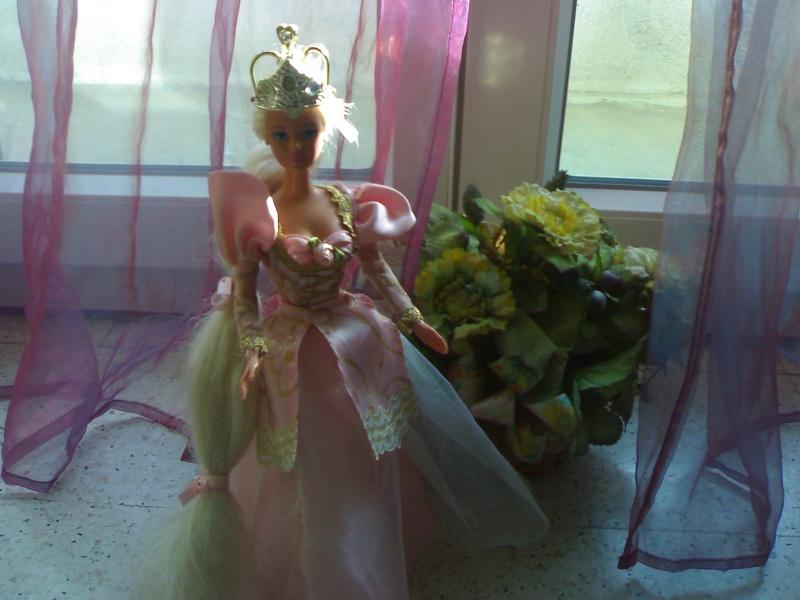 Ma Collection de Princesses Barbie 29012022