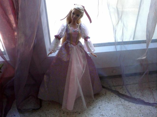 Ma Collection de Princesses Barbie Photo027