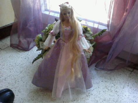 Ma Collection de Princesses Barbie Photo034