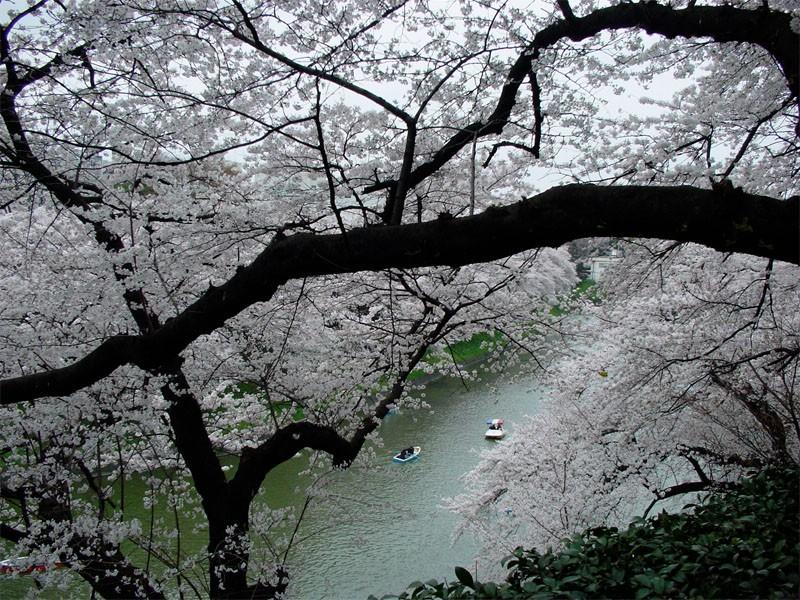 TOKYO / TOKYO 3D / JAPON / VISITE VIRTUELLE Imperi17
