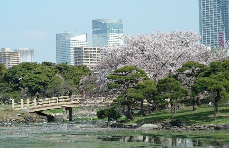 TOKYO / TOKYO 3D / JAPON / VISITE VIRTUELLE Kyu_sh12