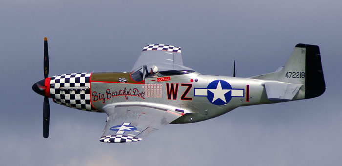 P-51 Mustang P51d10